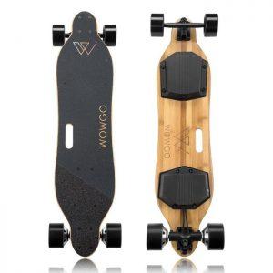 wowgo 2S longboard électrique nature